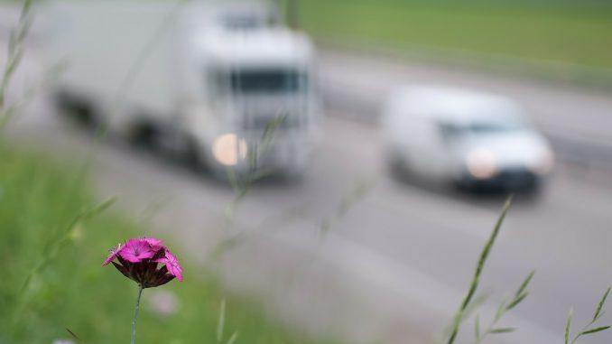Mașini în trafic. FOTO realworkhard
